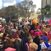 Members of Local 30 and their families join the San Diego Women's March.
